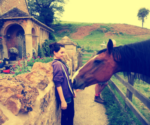 girl, hipster, and horse image