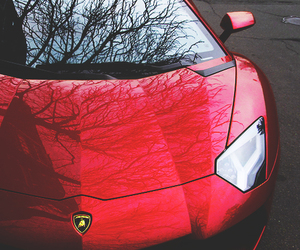 Hot, Lamborghini, and red image