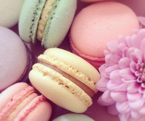 pastel, food, and pink image