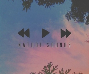 nature, music, and sound image