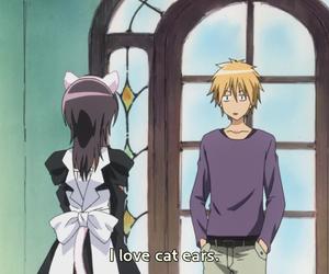 cat, ars, and misaki image