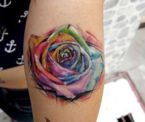 acuarela, colors, and rose image