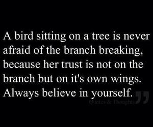 quotes, believe, and bird image