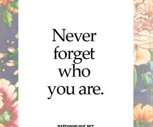 quote, love, and never image
