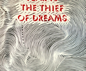Dream, fear, and thief image