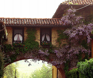 flowers, house, and italy image