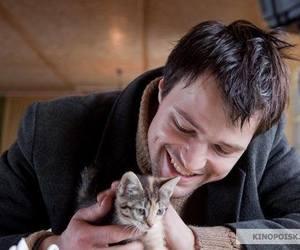 cat, cute, and danila kozlovsky image