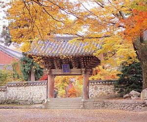korea, south korea, and 대한민국 image