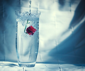 glass and rose image