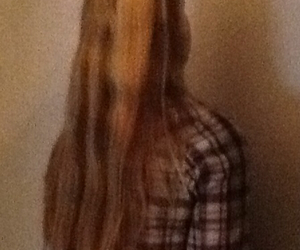 blond hair, hair, and brown hair image