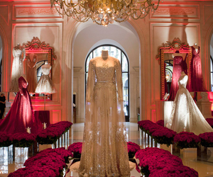 dress, elie saab, and luxury image