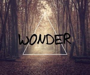 wonder image
