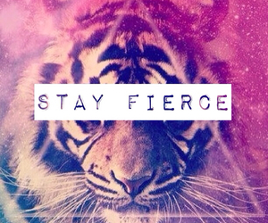 fierce, quotes, and roar image