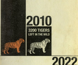 extinct, tiger, and 2022 image