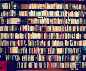 book, books, and culture image