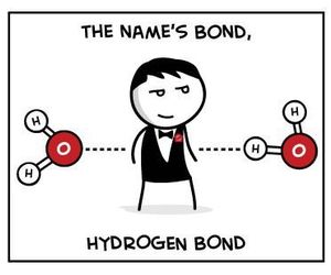 chemistry, bond, and funny image