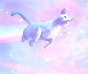 cat, galaxy, and rainbow image