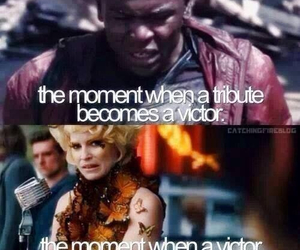 tribute and catching fire image