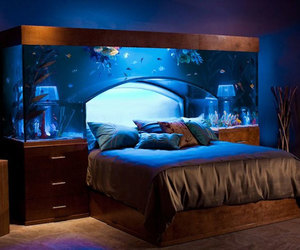 bed, bedroom, and fish image