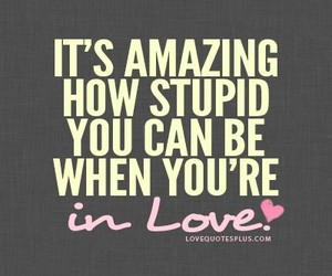 love, quote, and stupid image