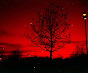 photography and red image