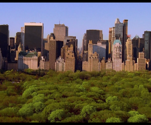 buildings, new york, and trees image