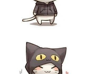 cat, cutie, and kitty image