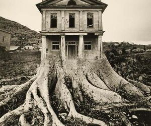 house, tree, and black and white image