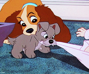 2, disney, and lady and the tramp image
