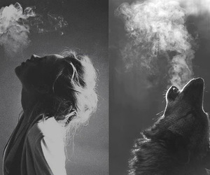 wolf, girl, and smoke image
