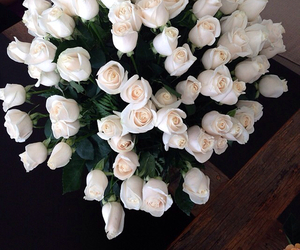 luxurious, roses, and white image