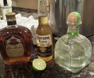 corona, drink, and tequila image