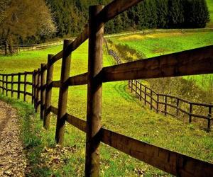 Fences, green, and grass image
