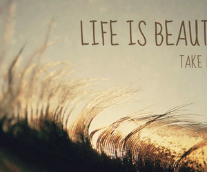 life, life quotes, and facebook covers image