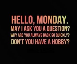 monday, hobby, and funny image