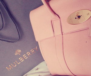bag, mulberry, and luxury image