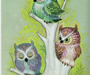 owls, art, and colorful image
