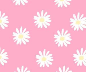 background, daisy, and iphone image