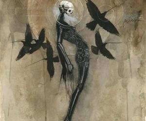art, skeleton, and crow image
