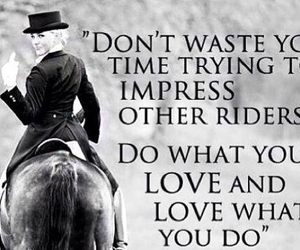 horse, equestrian, and Impress image