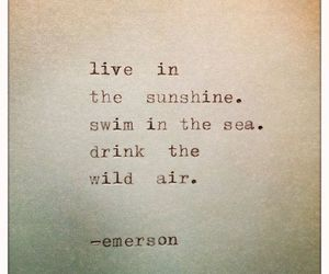 Emerson, life, and live image