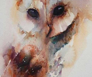owl, art, and painting image