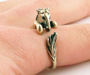 horse, ring, and stallion image