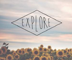 explore, flowers, and sky image