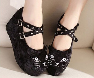 cat, shoes, and creepers image