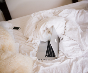 apple, bed, and fashion image