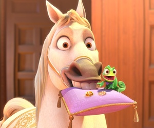 Maximus, pascal, and tangled image