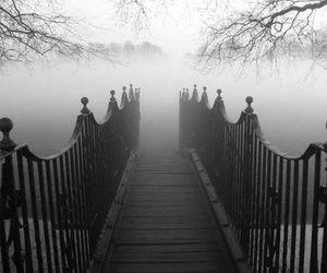fog, bridge, and tree image