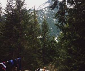 nature, friends, and forest image