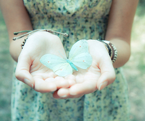 butterfly, dress, and blue image